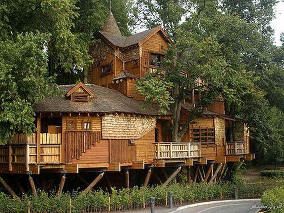 14-tree-house