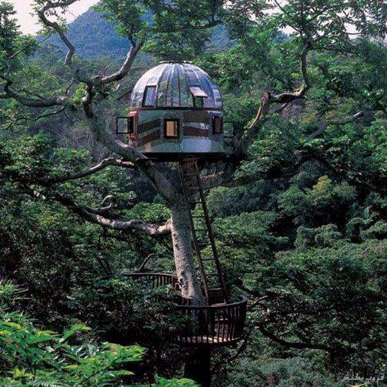 19-tree-house-modern