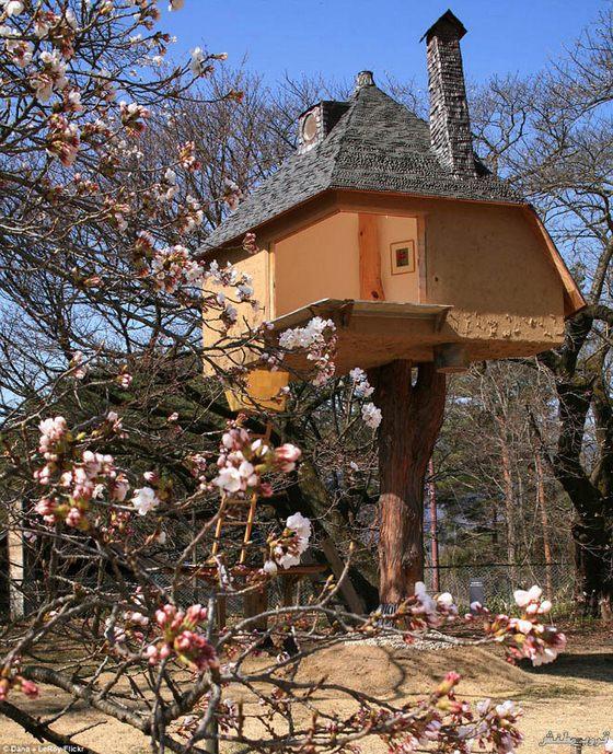 2-tree-house
