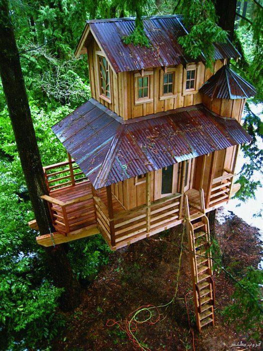 21-tree-house