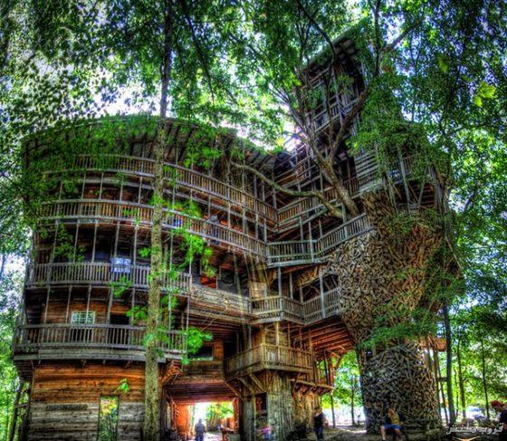 25-tree-house
