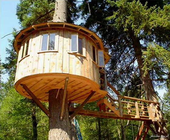5-tree-house-cool