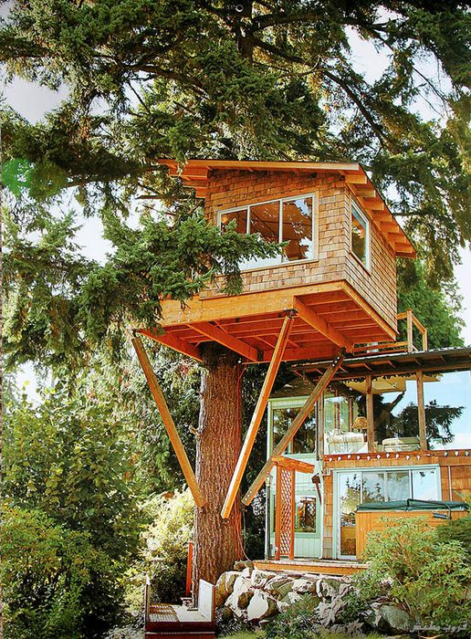 6-tree-house-cool